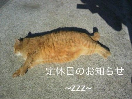 ☆1月のお休み☆